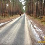 Piękna leśna droga od skoczni do jednostki policji:)