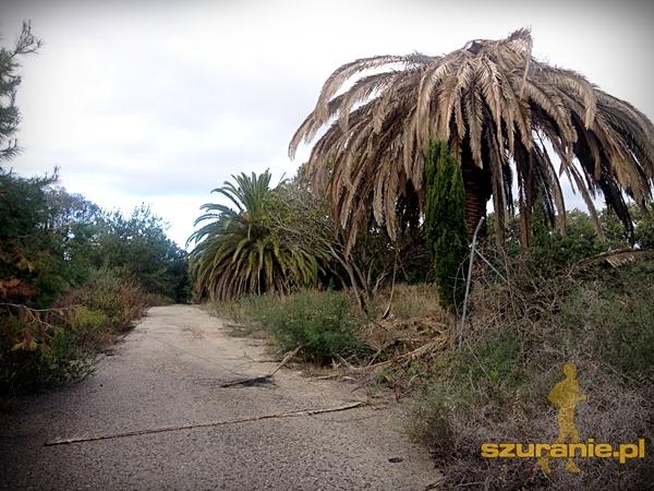 hiszpania_szuranie019